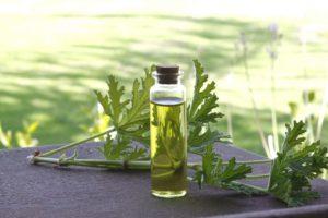 Æteriske olier kan bruges til medicinske og kosmetiske formål